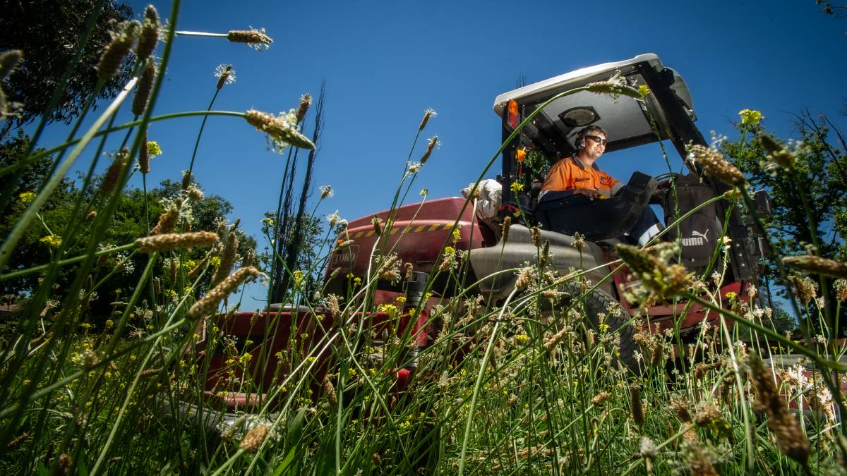TCCS horticultural team leader Michael Jukic busy mowing in Griffith. Picture: Karleen Minney