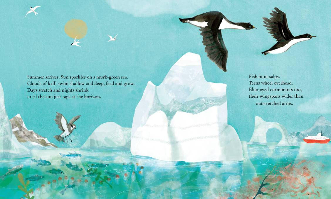 An illustration by Jess Racklyeft in Claire Saxby's Iceberg.