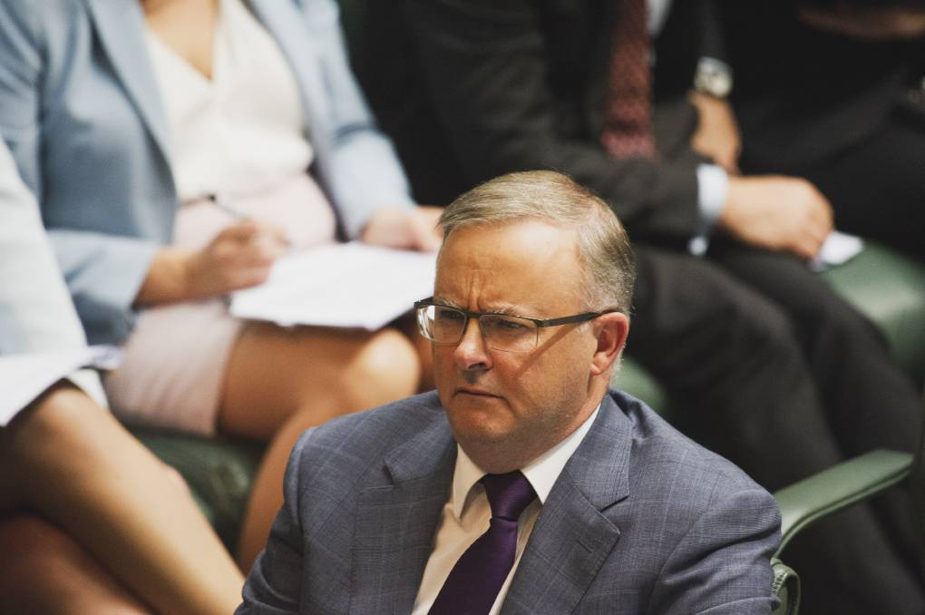 Labor leader Anthony Albanese. Picture: