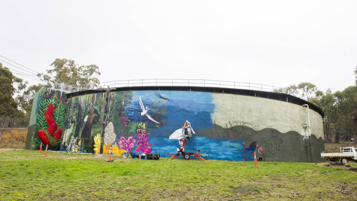 Artist Geoff Filmer last year creating the mural on the water tank on Hindmarsh Drive. Picture: Dion Georgopoulos