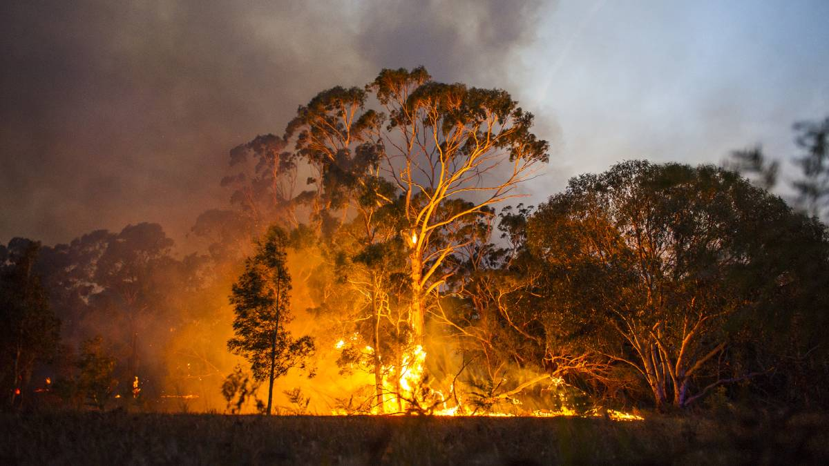 There needed to be a coordinated, system-wide approach to dealing with climate change in Australia, according to the CSIRO. Picture: Dion Georgopoulos