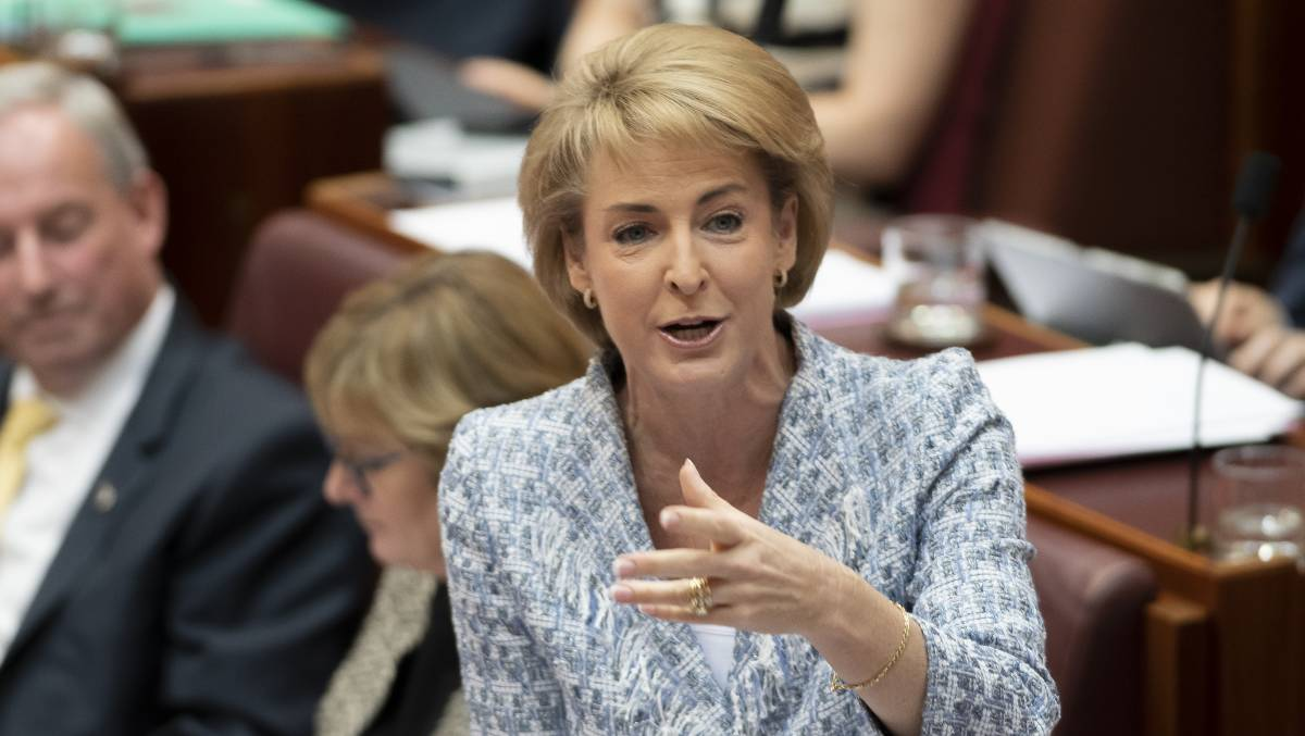 Employment minister Michaelia Cash. Picture: Sitthixay Ditthavong