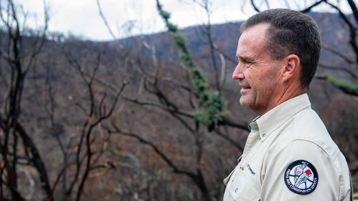 Namadgi National Park area manager Brett McNamara showing the regeneration of the park after bushfires swept through in January. Picture: Elesa Kurtz