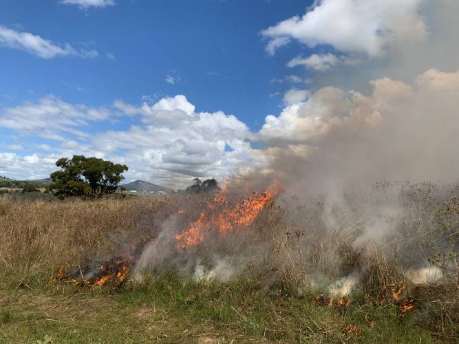 Firefighters have multiple hazard reduction burns planned this weekend. Picture: ACT ESA