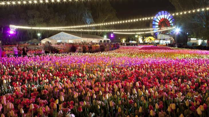 Floriade for 2020 has been cancelled due to the coronavirus.