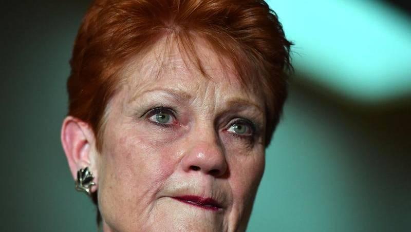 Pauline Hanson lashes family court 'liars'