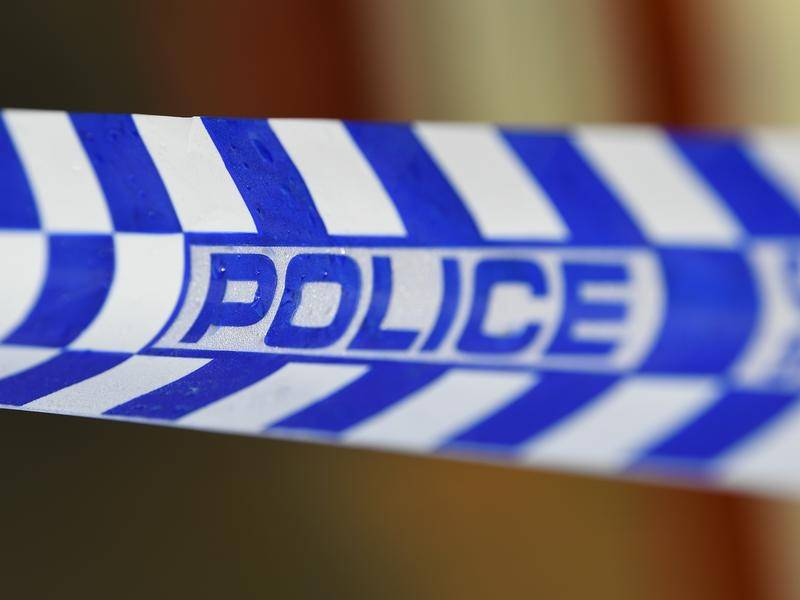 A Hobart man has allegedly been caught with child abuse and bestiality material.