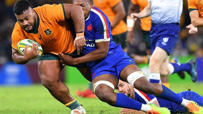 Smarting Springboks are out to step back |  Canberra Times