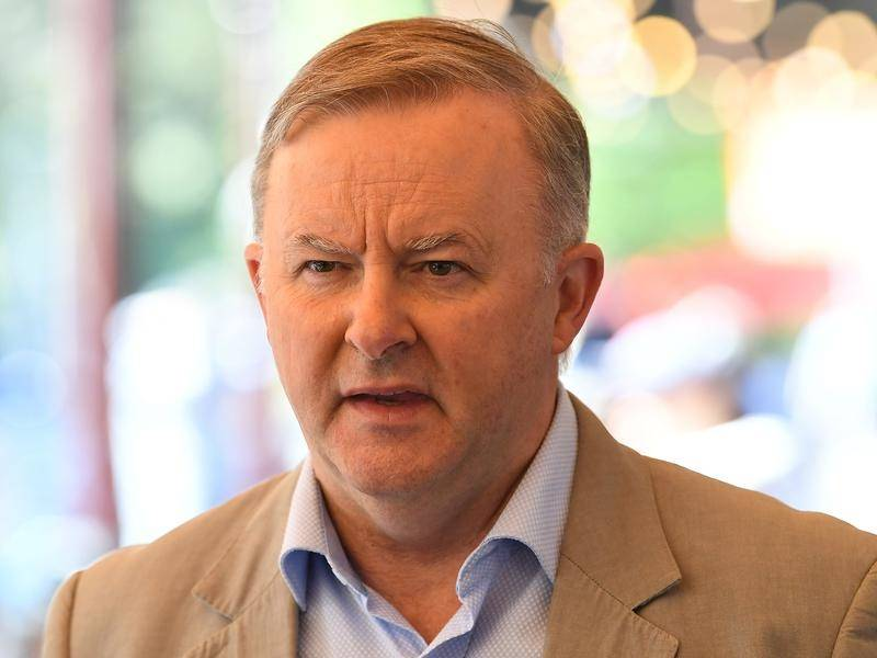 Anthony Albanese says convening COAG can ensure the best disaster coordination is in place.