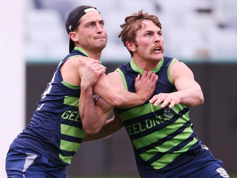 Luke Daulhaus (L) returns for the Cats this weekend in what will be Mitch Duncan's 200th AFL game.